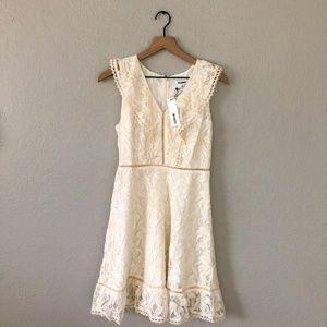 NWT BB Dakota Lace Collar Detail MIni Dress